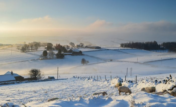 Upperthong in the snowy Holme Valley